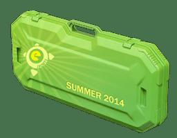 Summer eSports 2014