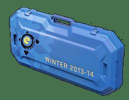 Winter eSports 2013